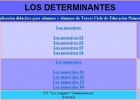 Los determinantes | Recurso educativo 35291
