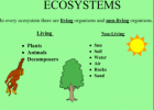 Ecosystems | Recurso educativo 50512